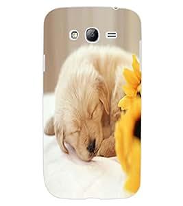 ColourCraft Cute Puppy Design Back Case Cover for SAMSUNG GALAXY GRAND NEO PLUS I9060I