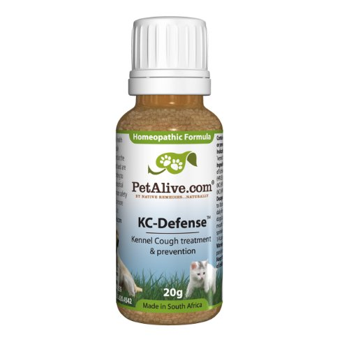 Native Remedies PKCD001 PetAlive KC-Defense for Kennel Cough, Respiratory in Pets - 20g