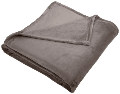 Buy Discount Pinzon Velvet Plush Blanket, Full/Queen, Grey