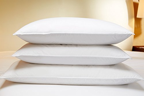 The Luxury Collection Feather and Down Pillow managing hotels effectively  lessons