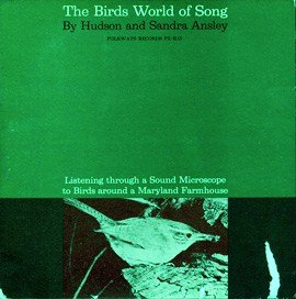 Birds World Of Song-Listening Through A Sound Microscope To Birds Around A Maryland Farmhouse