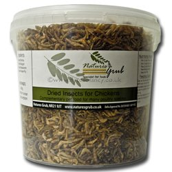 natures-grub-insects-for-chickens-450g
