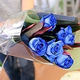 【送料無料】神秘的な青い薔薇 ブルーローズ〔ベンデラブルー〕45本の花束 花工房花贈りエーデルワイス フラワーギフト