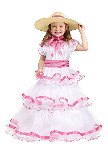Fun World Costumes Baby Girl'S Sweet Southern Bell Toddler Costume, Pink/White, Large(3T/4T)