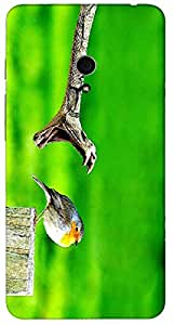 Timpax protective Armor Hard Bumper Back Case Cover. Multicolor printed on 3 Dimensional case with latest & finest graphic design art. Compatible with Asus ZenFone Design No : TDZ-28256