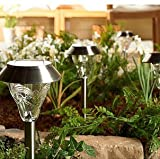 Westinghouse Set of 8 Torrence Premium Glass High-output Bright LED Solar Path and Garden Light Set - Full Stainless Steel Construction