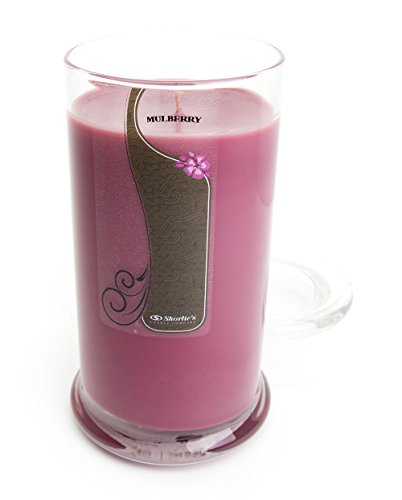 mulberry-jar-candle-candle-highly-scented-165-oz-dark-red-jar-candle-christmas-candles-collection