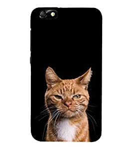 Cat Design 3D Hard Polycarbonate Designer Back Case Cover for Huawei Honor 4X :: Huawei Glory Play 4X