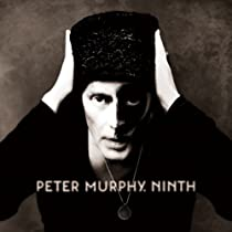 Ninth [Vinyl LP]