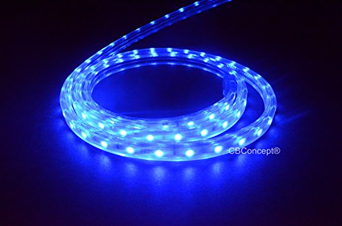 120 Volt Led String Lights : CBConcept 80 Feet 120 Volt LED SMD3528 Flexible Flat LED Strip Rope Light - [Christmas Lighting ...