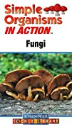 Simple Organisms in Action Fungi DVD