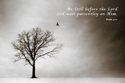 Psalm 37 Be Still Before the Lord Art Poster Print - 16x20