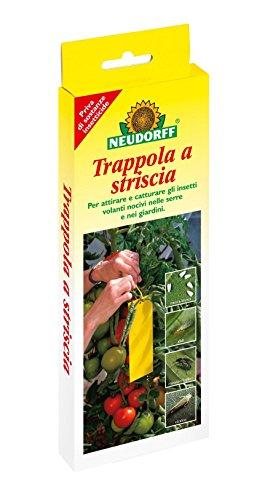 neudorf-trapinsetti-volanti-6873-7pz