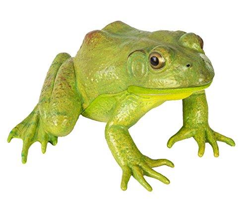 Safari Ltd  Incredible Creatures American Bullfrog