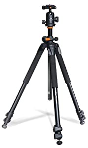 Vanguard Alta Pro 263AT Aluminum Tripod with SBH-100 Ball Head