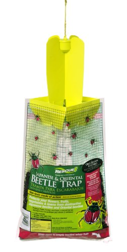 sterling-intl-jbtz-db12-rescue-oriental-and-japanese-beetle-trap