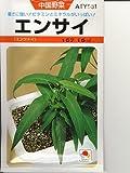 中国野菜 タキイ エンサイ(空芯菜) タキイの空芯菜種です