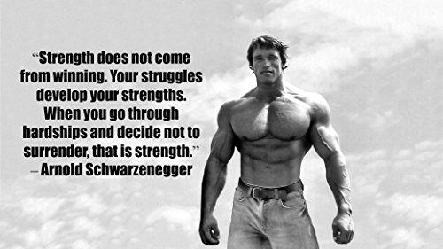 Arnold Schwarzenegger Inspiration