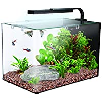 Interpet Nano LED Complete 19 Litre Aquarium Kit