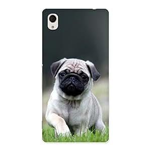 Pug Dog Grass Multicolor Back Case Cover for Xperia M4 Aqua