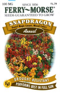 Ferry-Morse 1142 Snapdragon Annual Flower Seeds, Dwarf Magic Carpet, Mixed Colors (100 Milligram Packet)