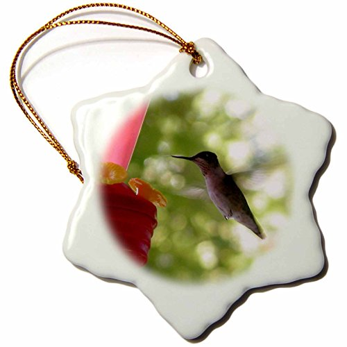 3dRose orn_29594_1 Hummingbird Flying to Feeder Snowflake Porcelain Ornament, 3-Inch