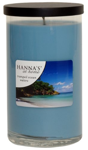 Hanna's at Home 19-Ounce Tranquil Ocean Waters Jar Candle