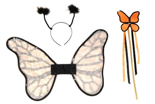 Secret Wishes Butterfly Costume Accessory Kit