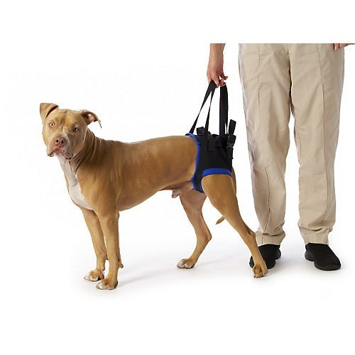 walkabout-back-pet-harness-small-by-walkabout