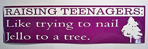 raising-teenagers-like-trying-to-nail-jello-to-a-tree-bumper-sticker