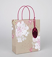 Pink Craft Floral Medium Gift Bag
