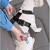 Petbuckle Small Breed Travel Harness W/ Adjuster - Under 20 Lb