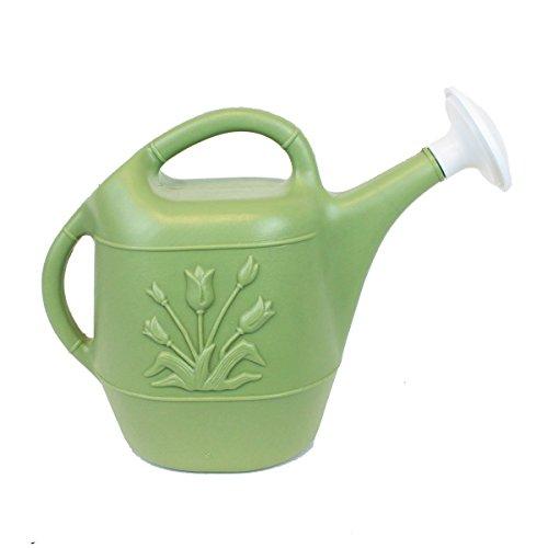 Union 63168 Watering Can, 1 gallon, Sage Green (1 Gallon Still compare prices)