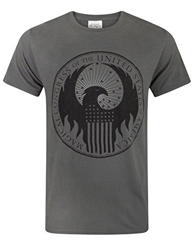 Fantastic Beasts and where to find them -  T-shirt - Maniche corte  - Uomo Charcoal Small