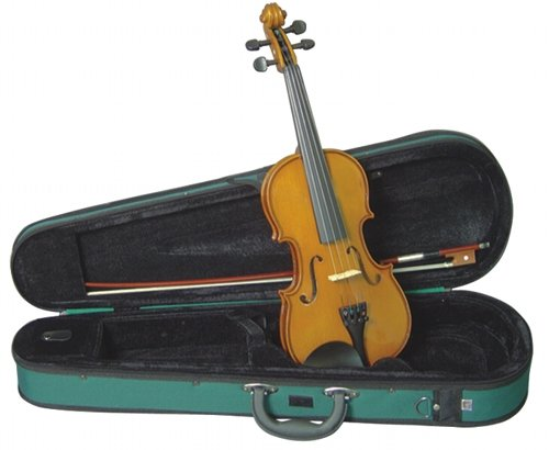 Musino 2000 Series Violin Outfits Vn2034 Electric Violin, Amber