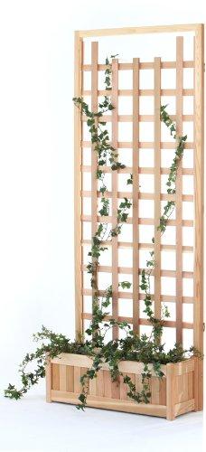 Raised Garden Beds Webnuggetz Com