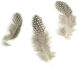 Touch of Nature 38138 Guinea Fowl Feathers Natural 4 grams