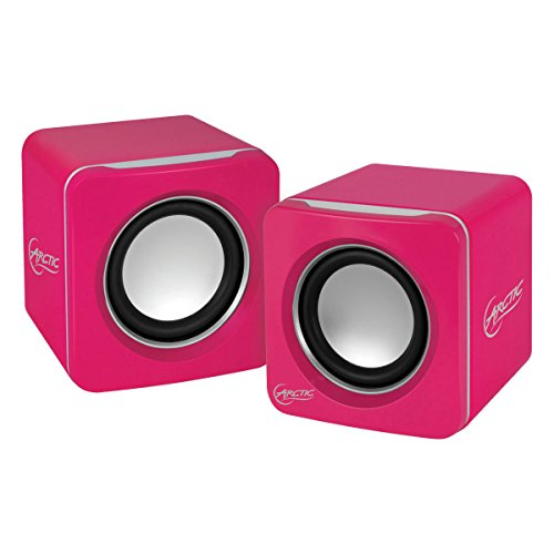 ARCTIC S111 Wireless Speaker