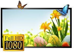 Sansui-SKQ48FH-48-inch-Full-HD-LED-TV