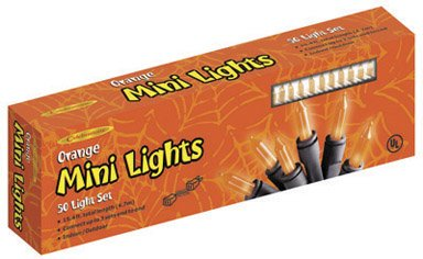 Celebrations Inliten 34750-71 Halloween Mini Light Set 24'