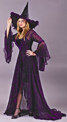 Witch Shimmering Rose Sm Md Halloween or Theatre Costume