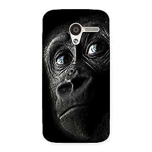Stylish King Kong Blue Eyes Back Case Cover for Moto X