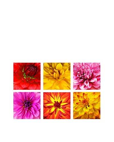 Art Addiction Multi Colored Floral Collage Set of 6, Multi, 15.75″ x 15.75″