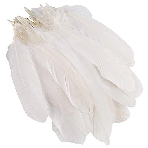 auaudate-50pcs-blanc-naturelles-plumes-doie-artisanat-bricolage-decoration-15-20cm