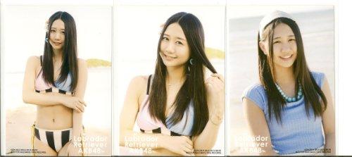 AKB48 公式生写真 ラブラドール・レトリバー 封入生写真 3種 コンプ 【古畑奈和】 SKE48
