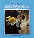 The Birds of North America: A Personal Selection