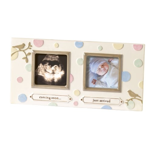 Grasslands Road Dot Dot Dot Sonogram Stoneware Frame, 8-1/8 by 12-1/4-Inch - 1