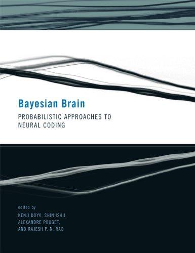 Bayesian Brain (Computational Neuroscience)