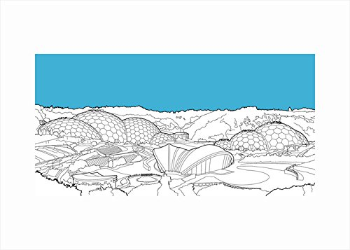 70-x-50-cm-caja-de-lisa-edoff-uk-tamano-grande-eden-project-fine-art-print