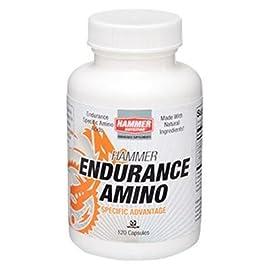 Hammer Nutrition Endurance Amino Caps - 120 Count Bottle - EAS